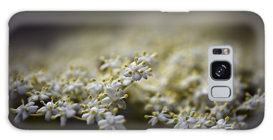 Beautiful Galaxy S8 Case featuring the photograph Spring Bloom by Svetlana Sewell