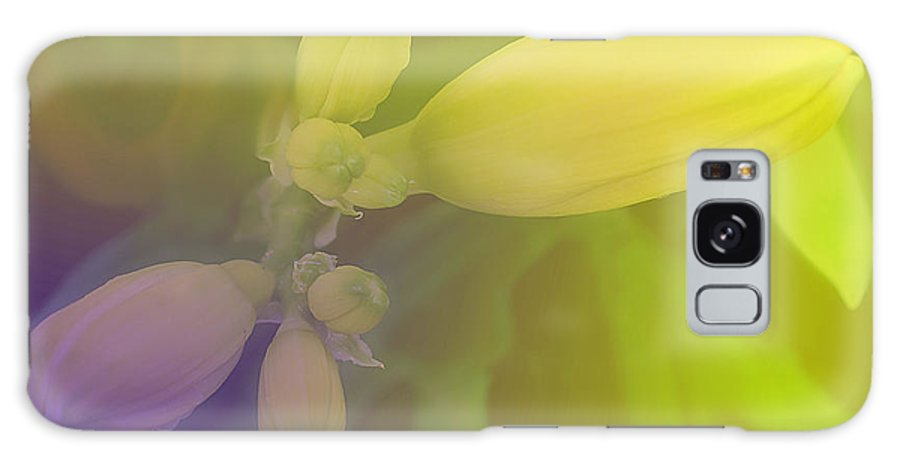 Flower Galaxy S8 Case featuring the photograph Spring Buds by Ian MacDonald