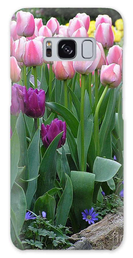 Tulips Galaxy S8 Case featuring the photograph Spring Colors by Louise Magno