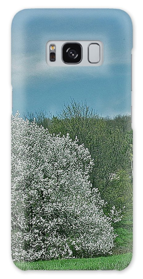 Spring Is Here Galaxy S8 Case featuring the photograph Spring Is Here by Debra   Vatalaro
