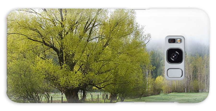 Tree Galaxy Case featuring the photograph Spring Meadow by Idaho Scenic Images Linda Lantzy