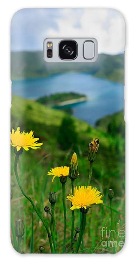 Caldera Galaxy S8 Case featuring the photograph Springtime In Fogo Crater by Gaspar Avila
