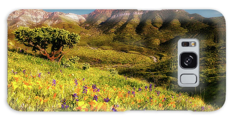 Adventure Galaxy S8 Case featuring the photograph Springtime In The Desert Southwest by Rick Furmanek