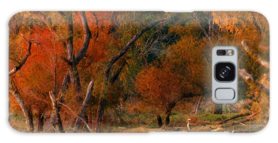 Landscape Galaxy Case featuring the photograph Squaw Creek Egrets by Steve Karol
