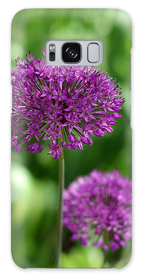 Allium Galaxy S8 Case featuring the photograph Stand Tall by Linda Mishler