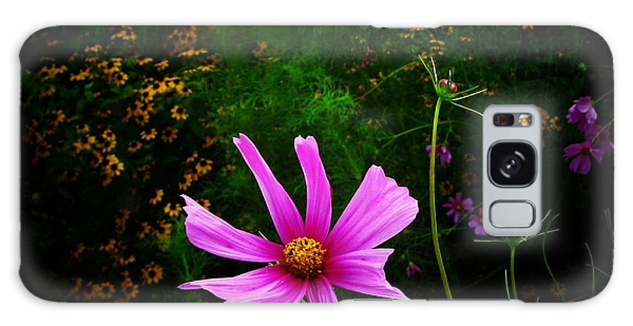 Flowers Galaxy S8 Case featuring the photograph Star Flower by Joyce Kimble Smith