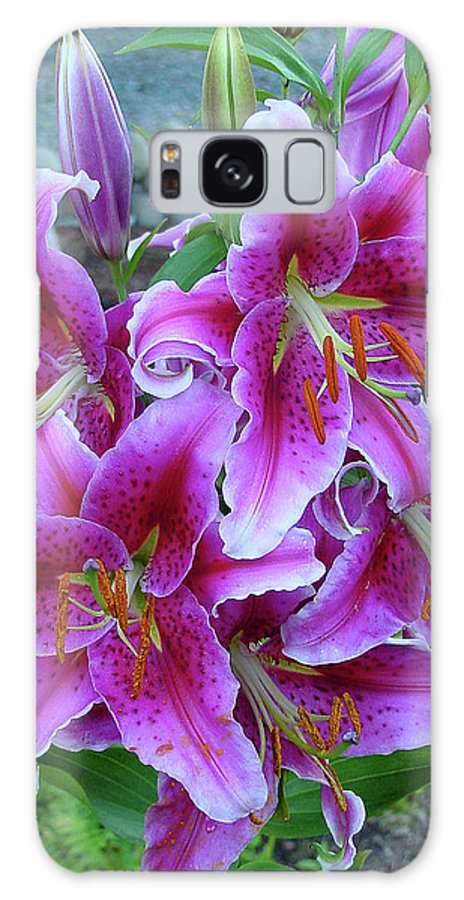 Group Galaxy S8 Case featuring the photograph Stargazer Lily by Shirley Heyn