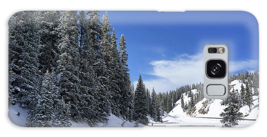 Colorado Galaxy S8 Case featuring the photograph Stately Pines by Leda Robertson