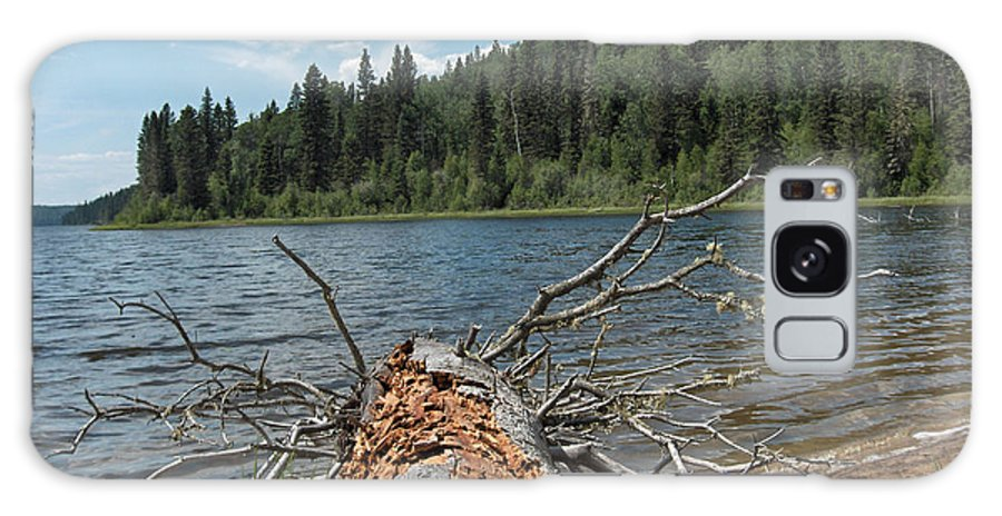 Water Lake Scenery Trees Wood Forest Driftwood Branches Shore Beach Galaxy S8 Case featuring the photograph Steepbanks Lake The Fallen by Andrea Lawrence