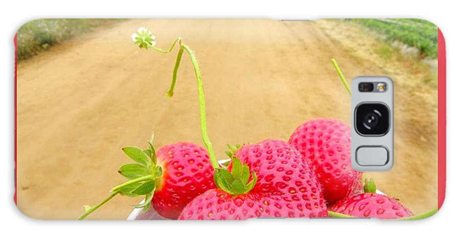 Strawberries Galaxy S8 Case featuring the photograph Strawberry Road by Jennifer Haley