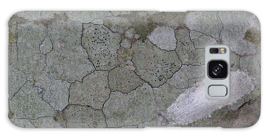 Joy Galaxy S8 Case featuring the photograph Study In Grey Life by Douglas Barnett