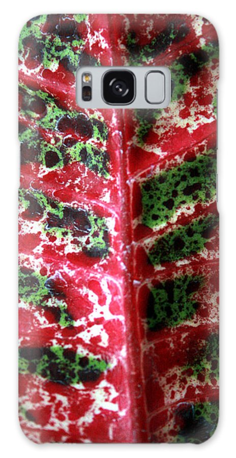 Tropical Leaves Galaxy S8 Case featuring the photograph Study Of The Croton 3 by Jennifer Bright