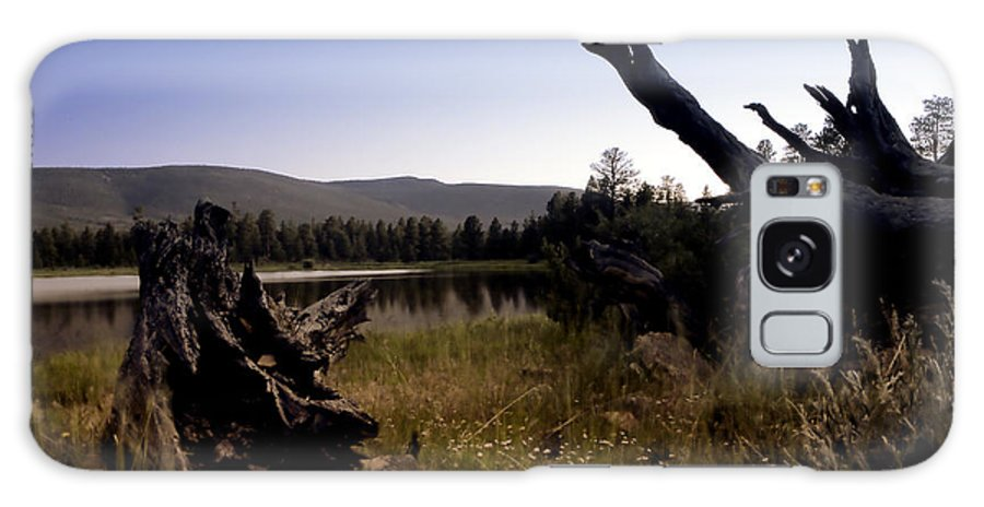 Nature Galaxy S8 Case featuring the photograph Stumped By The Lake by John K Sampson