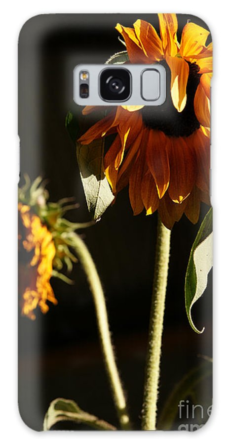 Summer Galaxy S8 Case featuring the photograph Summer And The Beat Of Your Heart by Linda Shafer