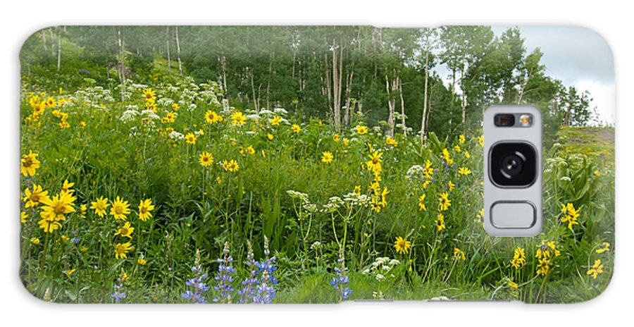 Aspen Galaxy S8 Case featuring the photograph Summer Aspen Glade With Wildflowers by Cascade Colors
