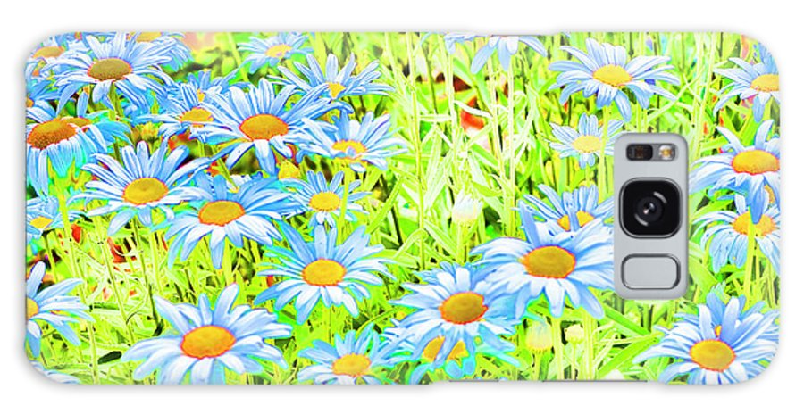 Daisies Galaxy S8 Case featuring the photograph Summer Blues by Traci Cottingham