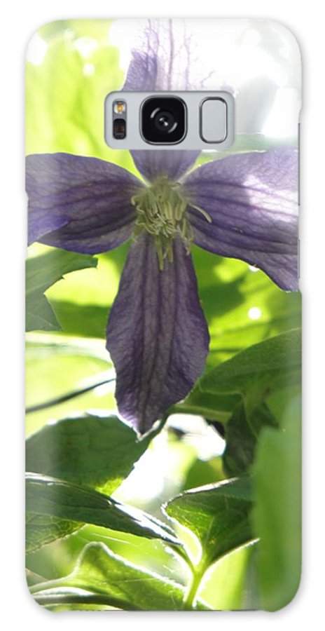 Flora Galaxy S8 Case featuring the photograph Summer Clematis In Light Shade by Susan Baker