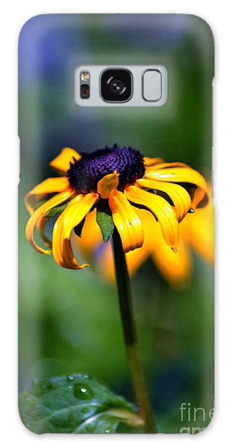 Flowers Galaxy S8 Case featuring the photograph Summer Flower by Robert Scifo