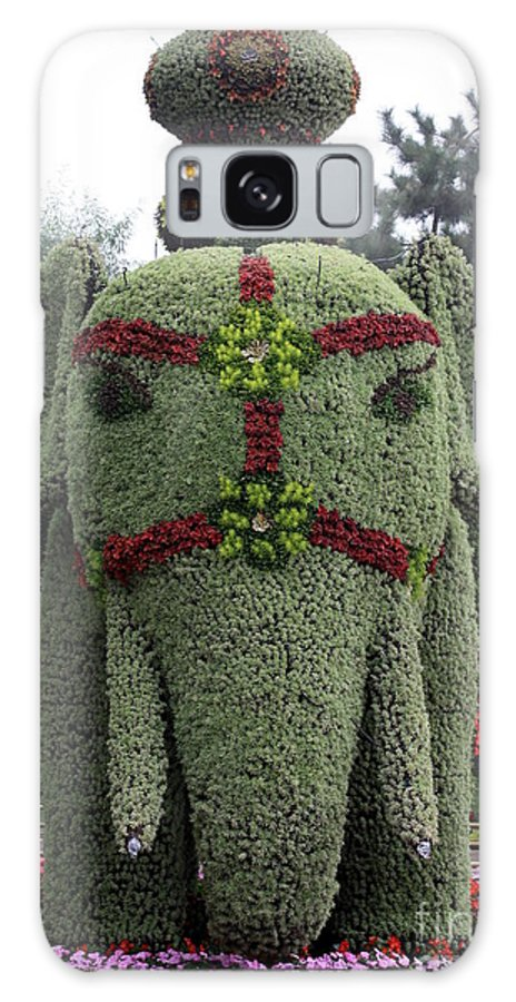 Elephant Galaxy S8 Case featuring the photograph Summer Palace Elephant 2 by Carol Groenen