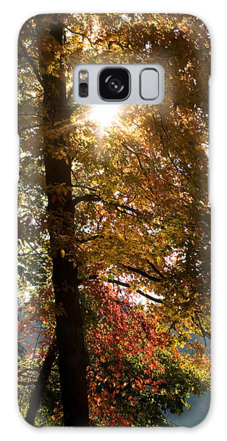 Landscape Galaxy S8 Case featuring the photograph Sun And Autumn by Amanda Kiplinger