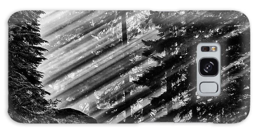 Mount Rainier National Park Galaxy S8 Case featuring the photograph Sunbeams Through The Pines - Mount Rainier by Ed Thune