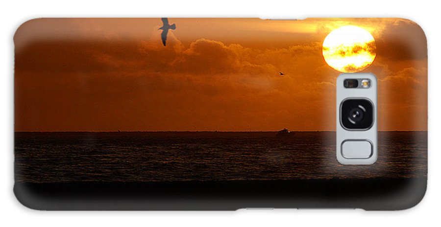 Clay Galaxy S8 Case featuring the photograph Sundown Flight by Clayton Bruster