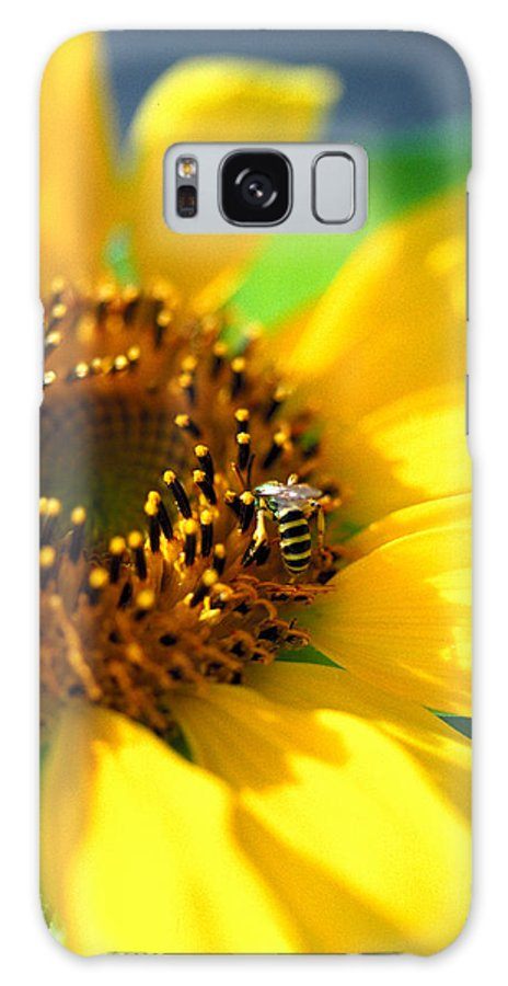 Bright Galaxy S8 Case featuring the photograph Sunflower And Bee by Thomas Firak