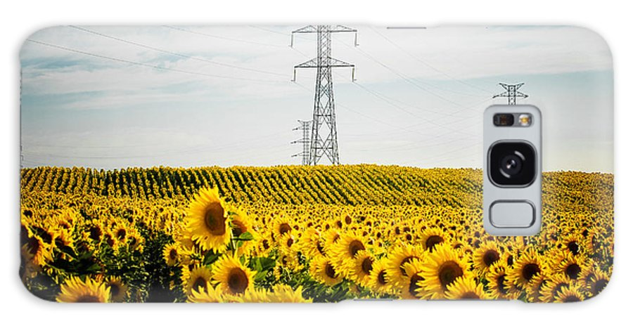 Sunflower Galaxy S8 Case featuring the photograph Sunflower Field by Nelson Mineiro