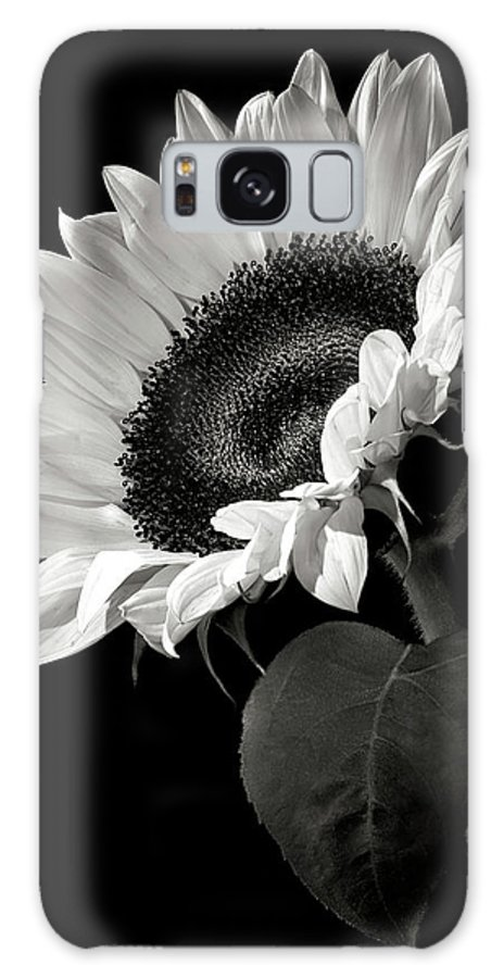 Flower Galaxy Case featuring the photograph Sunflower In Black And White by Endre Balogh