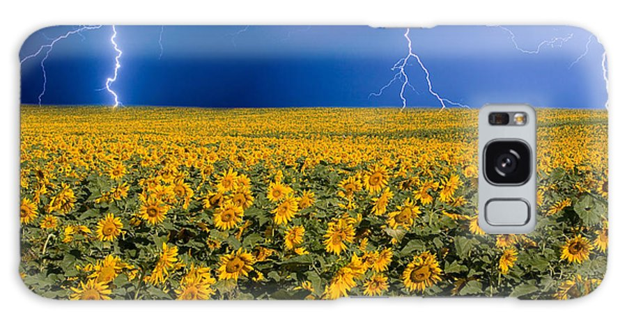Sunflowers Galaxy S8 Case featuring the photograph Sunflower Lightning Field by James BO Insogna