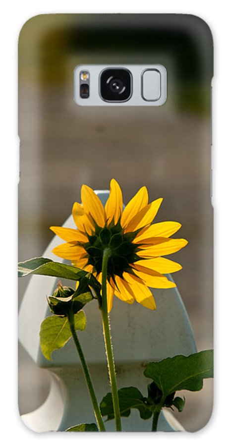 Sun Galaxy S8 Case featuring the photograph Sunflower Morning by Douglas Barnett