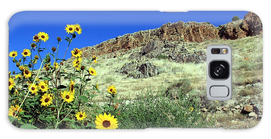 Sunflowers Galaxy S8 Case featuring the photograph Sunflowers And Cliffs by George Jones