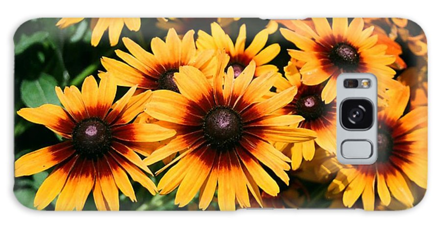 Sunflowers Galaxy S8 Case featuring the photograph Sunflowers by Dean Triolo