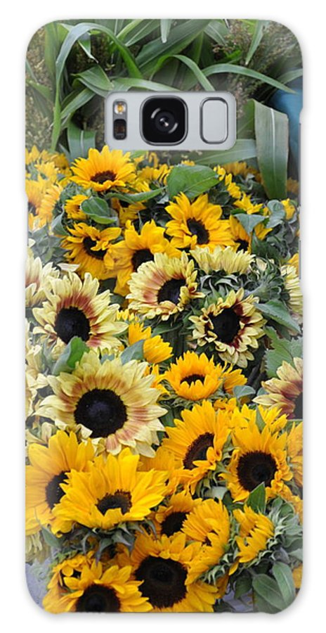 Flowers. Sunflowers Galaxy S8 Case featuring the photograph Sunflowers For Sale by Vijay Sharon Govender