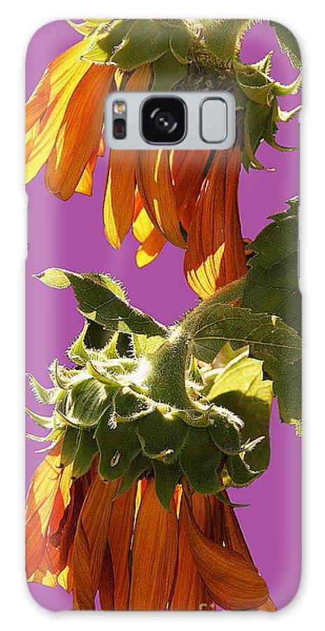 Sunflowers Galaxy S8 Case featuring the photograph Sunflowers by Viktor Savchenko