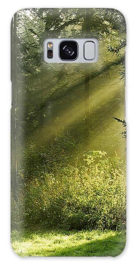 Nature Galaxy Case featuring the photograph Sunlight by Daniel Csoka