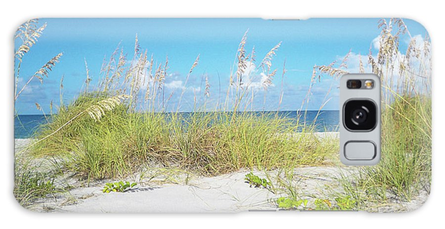 Florida Galaxy S8 Case featuring the photograph Sunny Sanibel by Chris Andruskiewicz