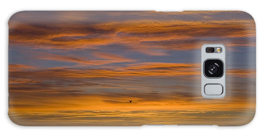 Sun Sunrise Cloud Clouds Morning Early Bright Orange Bird Flight Fly Flying Blue Ocean Water Waves Galaxy S8 Case featuring the photograph Sunrise by Andrei Shliakhau