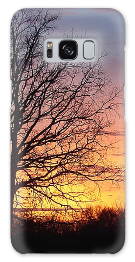 Tree Black Orange Galaxy Case featuring the photograph Sunrise In Illinois by Luciana Seymour