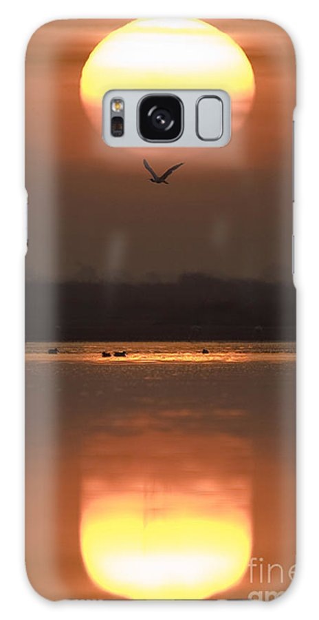 Lake Galaxy S8 Case featuring the photograph Sunrise Reflection by Hitendra SINKAR