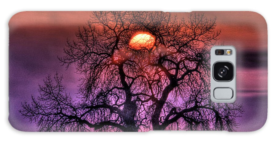 Sunrise Galaxy S8 Case featuring the photograph Sunrise Through The Foggy Tree by Scott Mahon