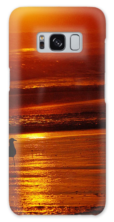 Sunset Galaxy S8 Case featuring the photograph Sunset Bird 2 by Jill Reger