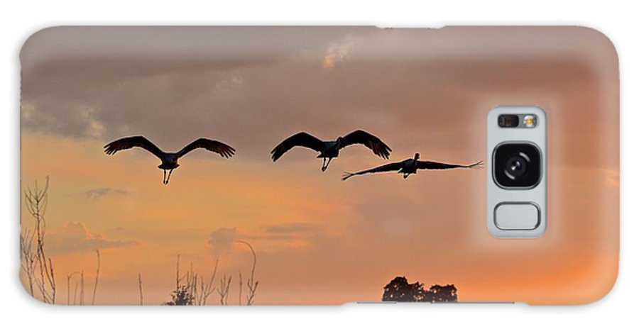 Flight Galaxy S8 Case featuring the photograph Sunset Fly Over by Carol Bradley