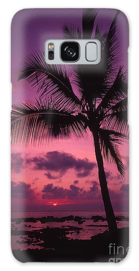 Bright Galaxy S8 Case featuring the photograph Sunset Palms by Ron Dahlquist - Printscapes