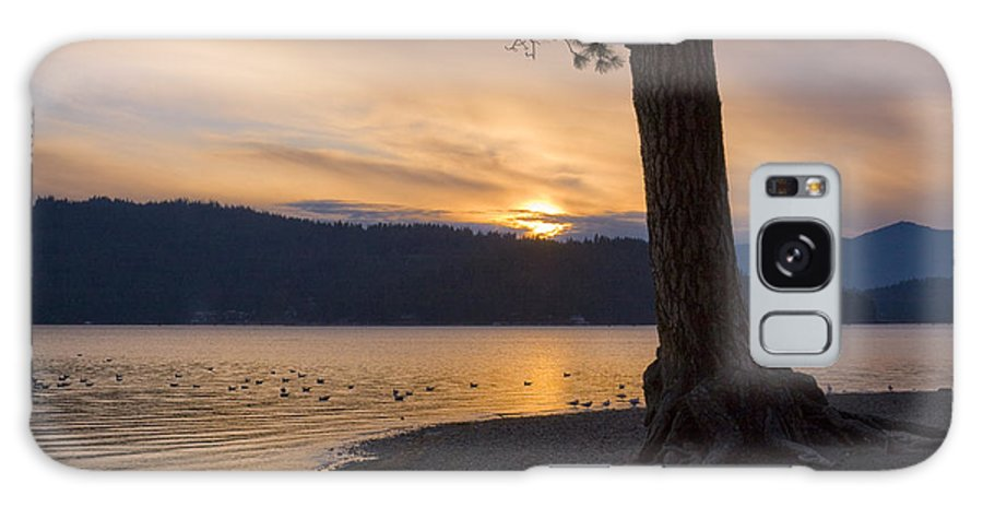 Sunset Galaxy Case featuring the photograph Sunset Silhouette by Idaho Scenic Images Linda Lantzy