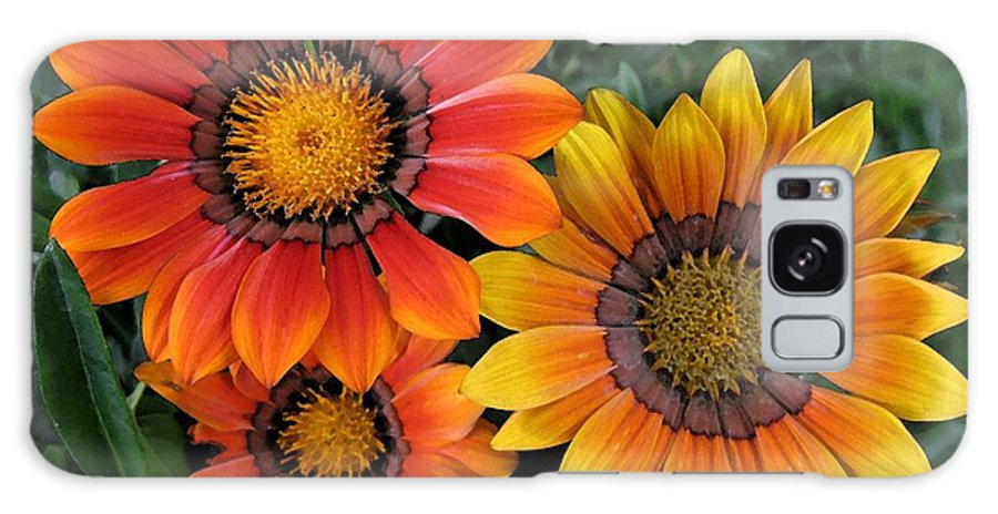 Flowers Galaxy S8 Case featuring the photograph Surprise by Carol Sweetwood