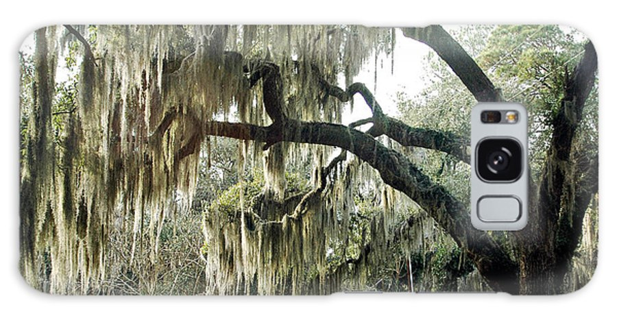 Savannah Moss Trees Galaxy S8 Case featuring the photograph Surreal Gothic Savannah Georgia Trees With Hanging Spanish Moss by Kathy Fornal