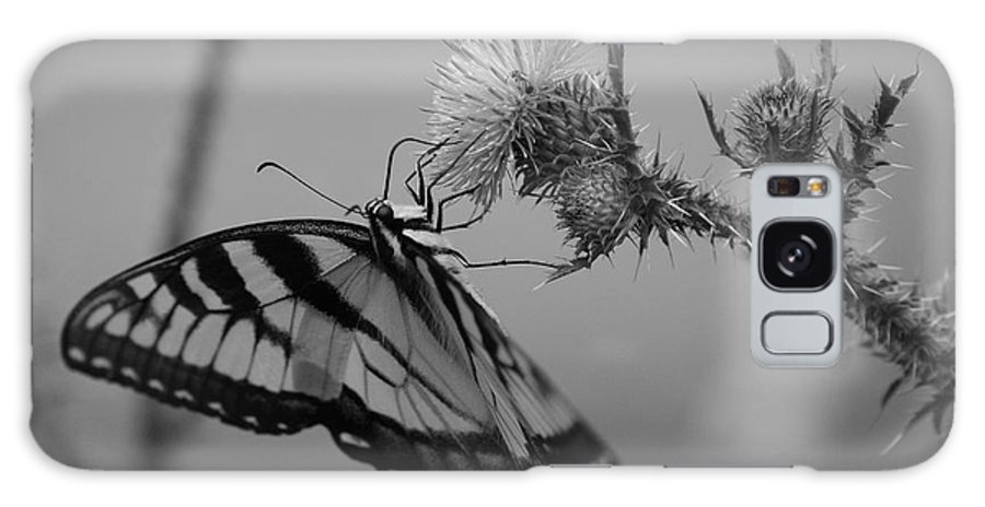 Swallowtail Galaxy S8 Case featuring the photograph Swallowtail Black And White by Todd Hostetter