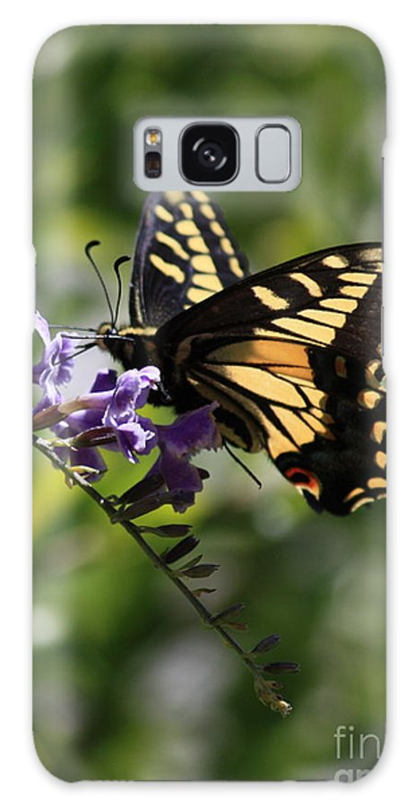 Swallowtail Butterfly Galaxy S8 Case featuring the photograph Swallowtail Butterfly 1 by Carol Groenen