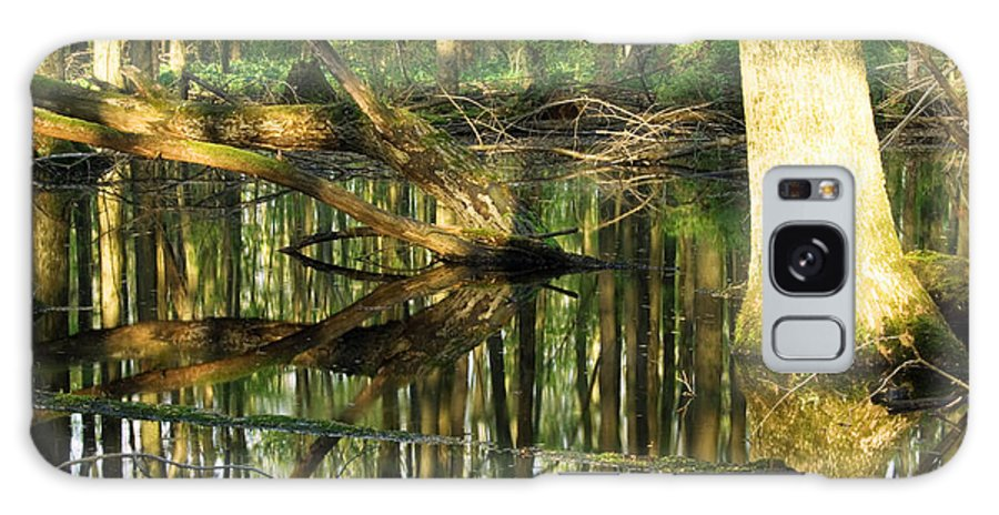 Landscape Galaxy S8 Case featuring the photograph Swamps Are Beautiful Too by Amanda Kiplinger